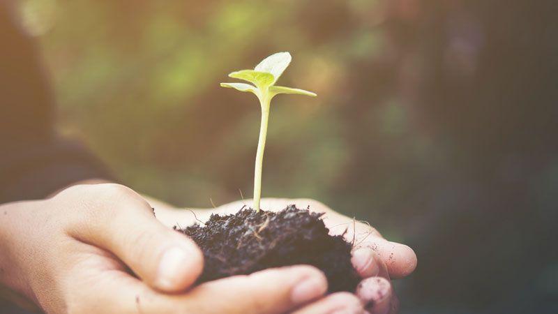 """""""ECO Print Solutions"""", un crecimiento consolidado desde la calidad."""